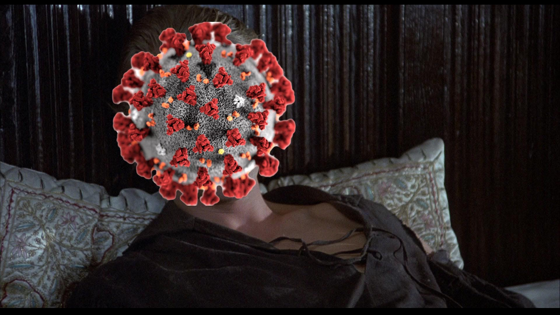 westleyvirus2